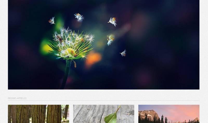 Free WordPress Photography Themes Full Screen
